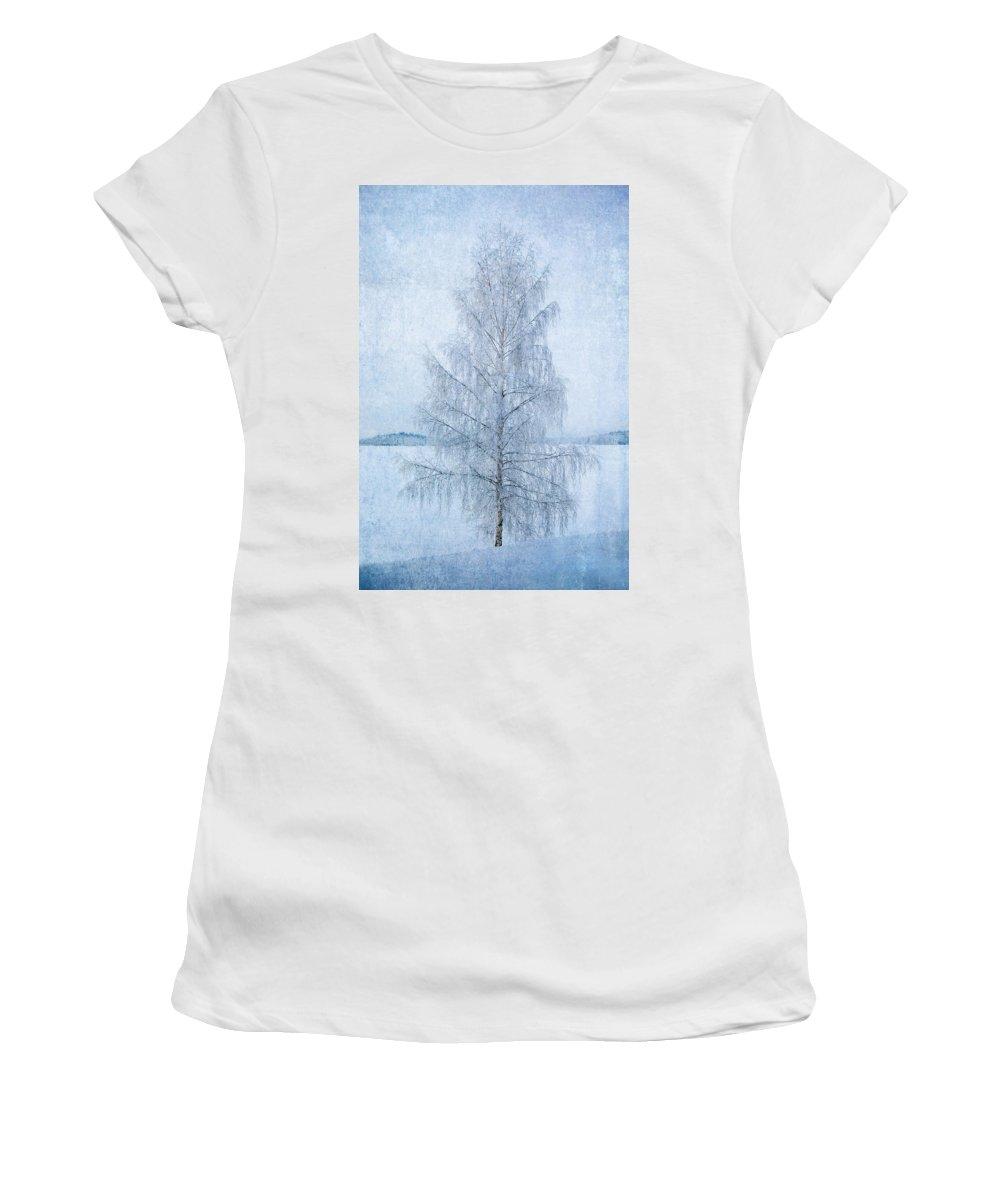 Birch Women's T-Shirt featuring the photograph December Birch by Ari Salmela