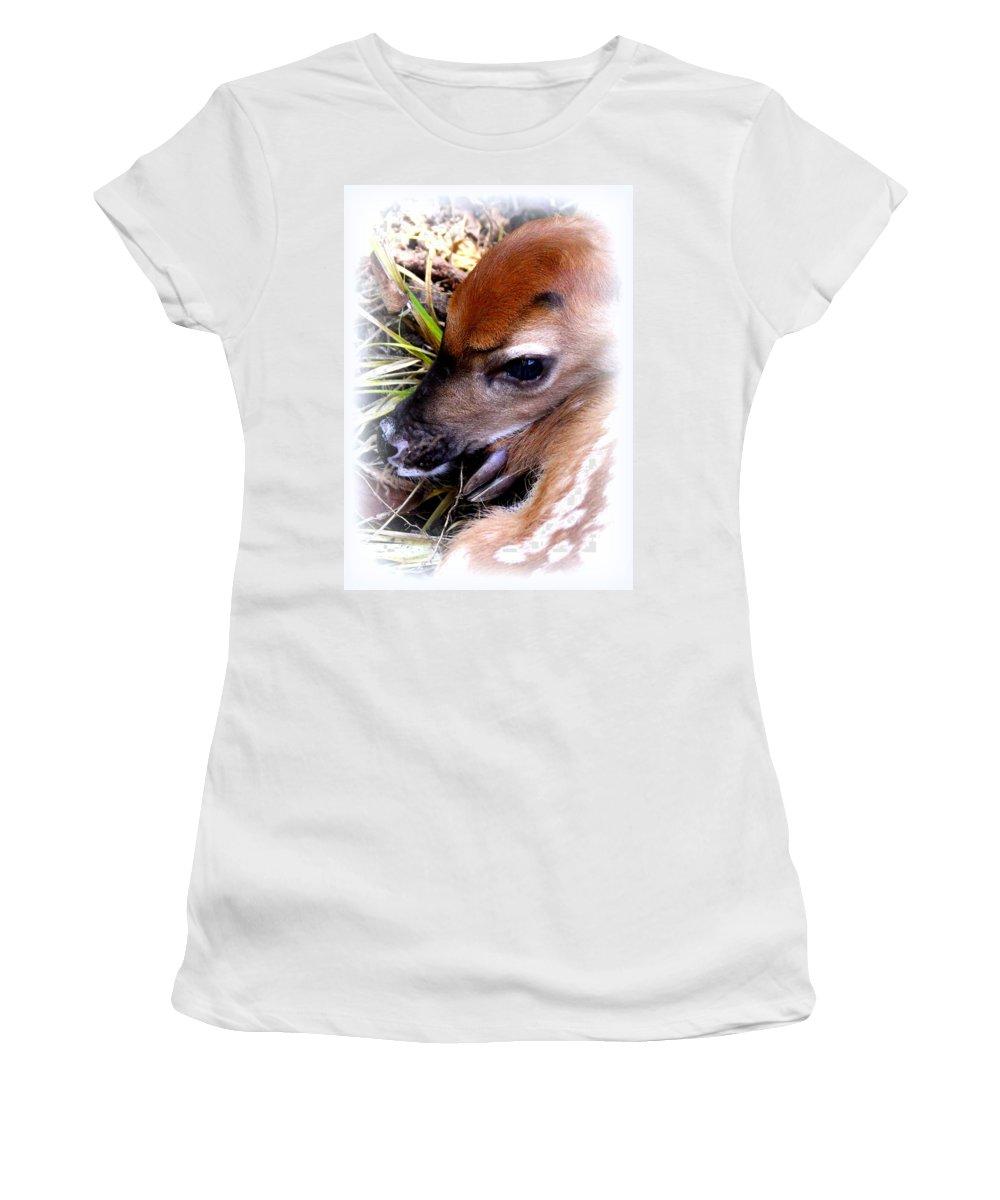 Deer Women's T-Shirt featuring the photograph Deer-img-0349-002 by Travis Truelove