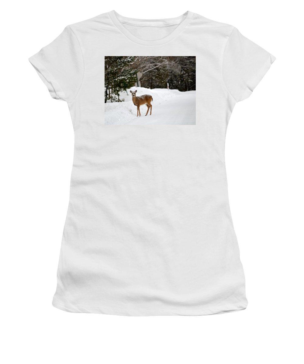 Michigan Women's T-Shirt featuring the photograph Deer On Side Of Road by Linda Kerkau