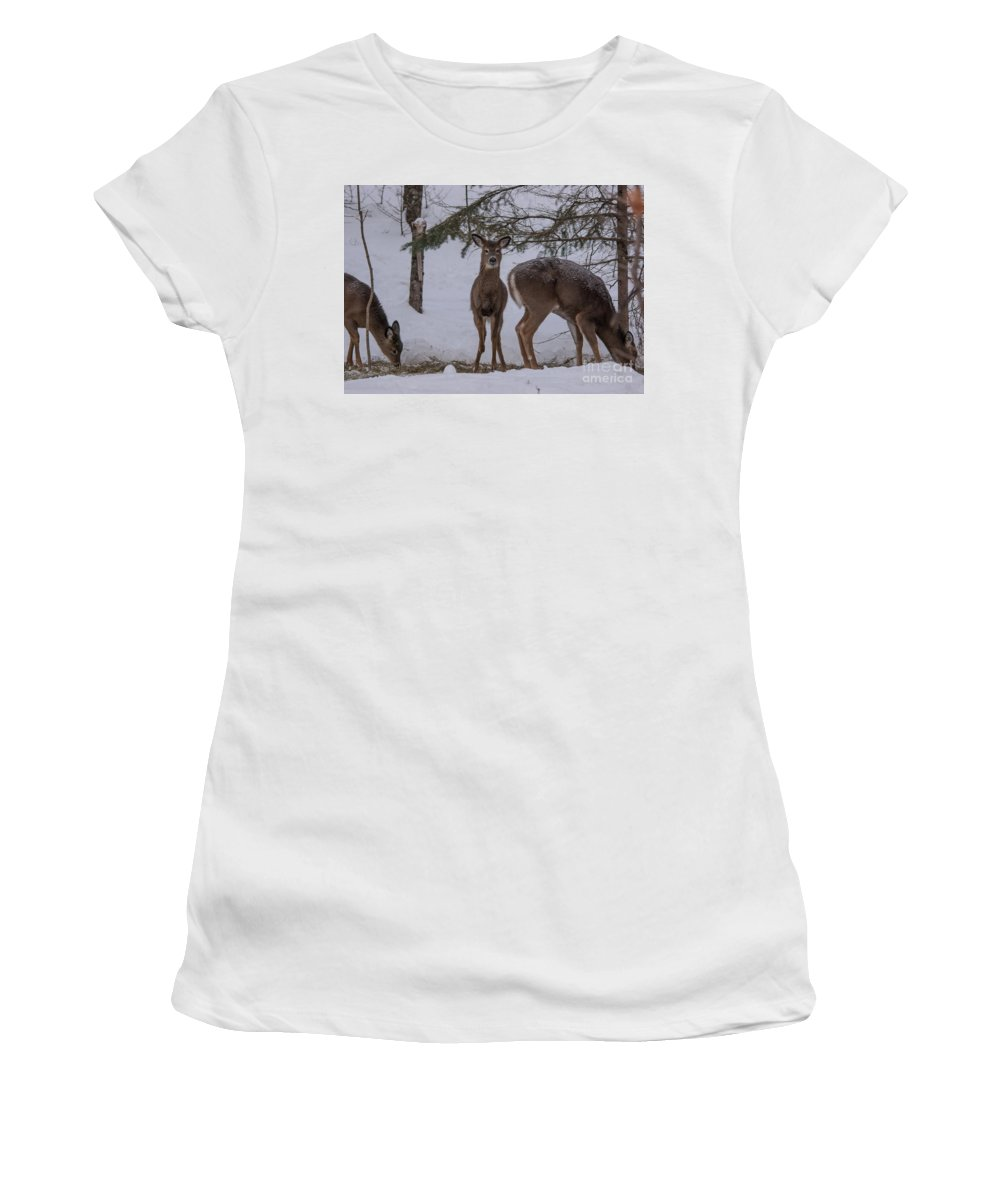 Women's T-Shirt (Athletic Fit) featuring the photograph Deer With A Leg Up by Cheryl Baxter