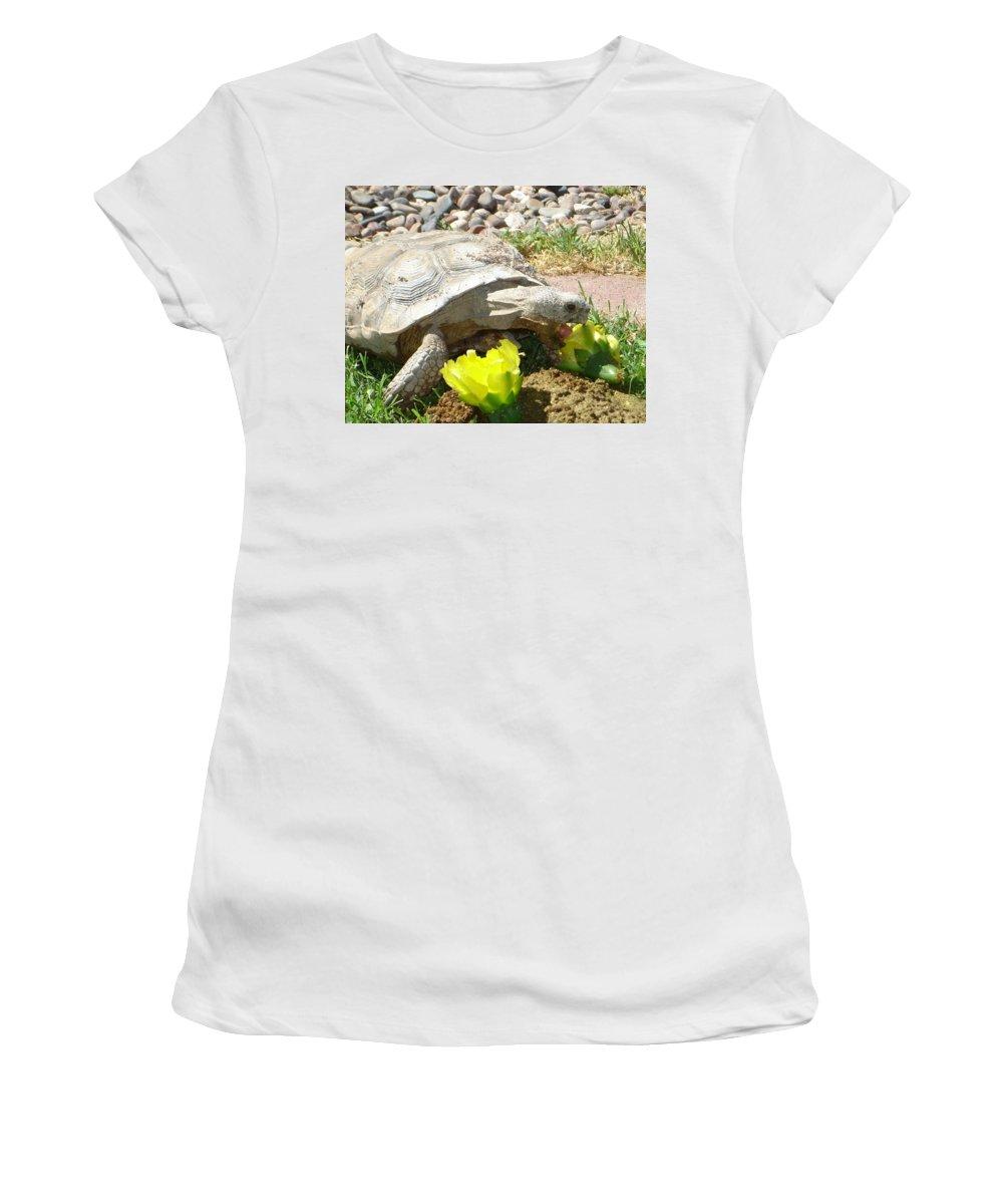 Desert Tortoise Women's T-Shirt featuring the photograph Desert Tortoise Delight by Donna Jackson