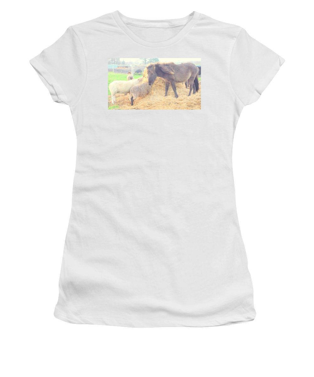 Pony Women's T-Shirt (Athletic Fit) featuring the photograph It's Time You Join Us For Dinner by Hilde Widerberg