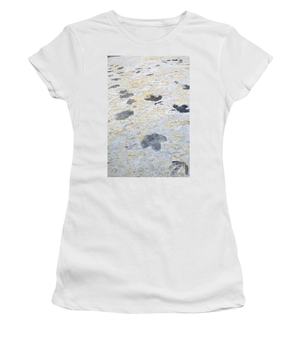 Animal Women's T-Shirt (Athletic Fit) featuring the photograph Dinosaur Tracks by James Steinberg