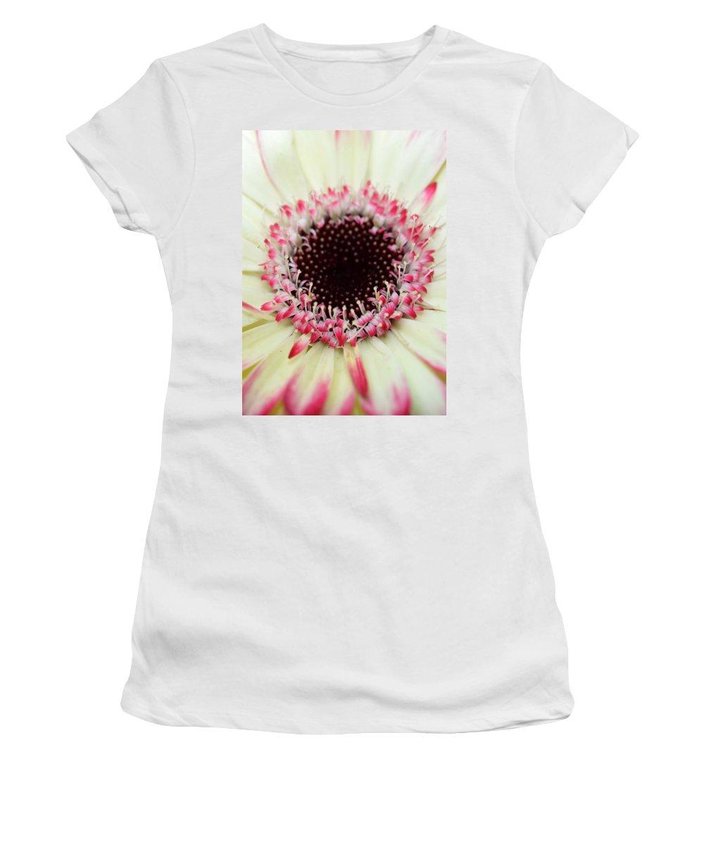 Gerber Women's T-Shirt featuring the photograph Dsc310d-005 by Kimberlie Gerner