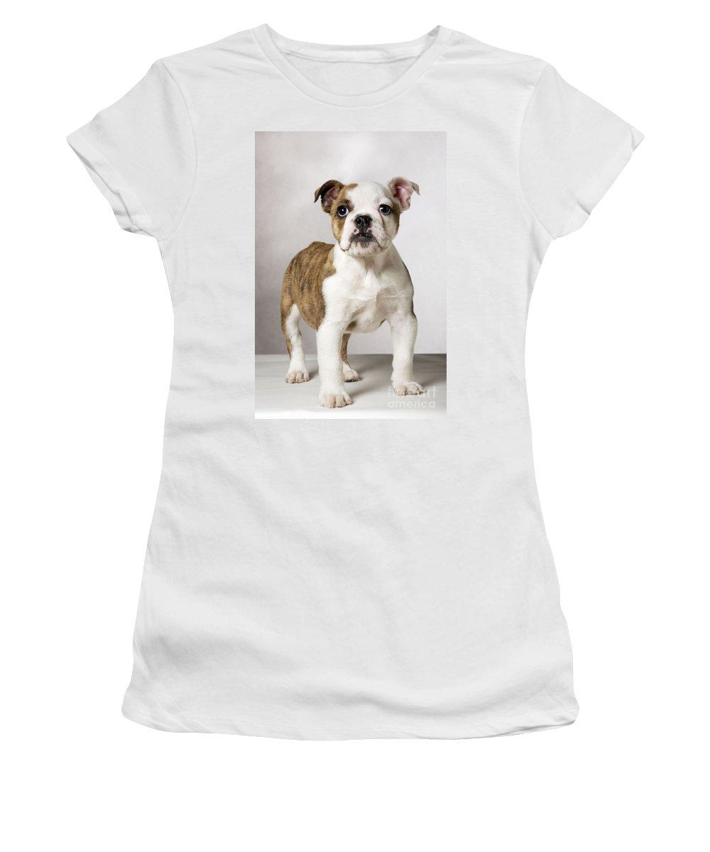 English Bulldog Women's T-Shirt (Athletic Fit) featuring the photograph English Bulldog by Johan De Meester