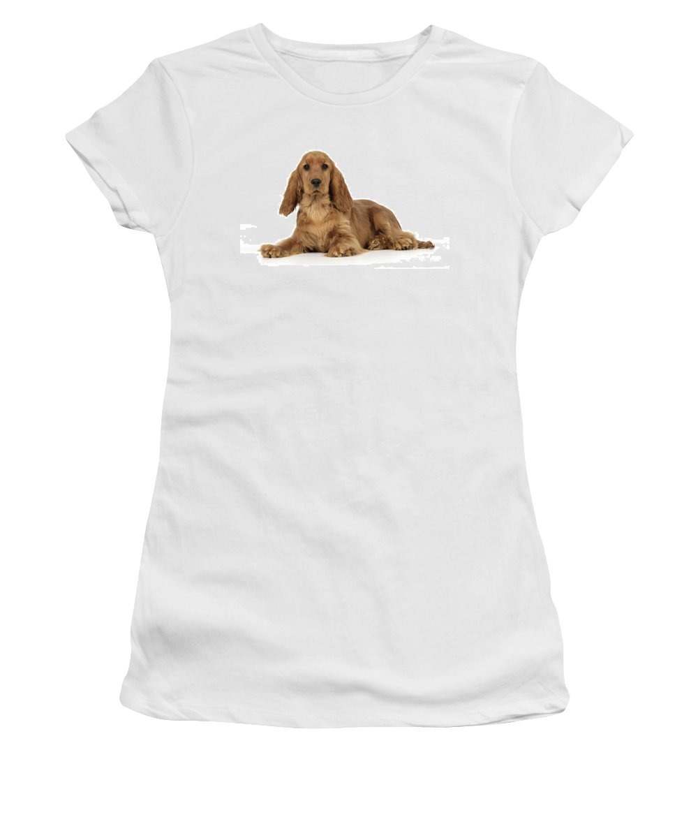 English Cocker Women's T-Shirt (Athletic Fit) featuring the photograph English Cocker Spaniel by John Daniels