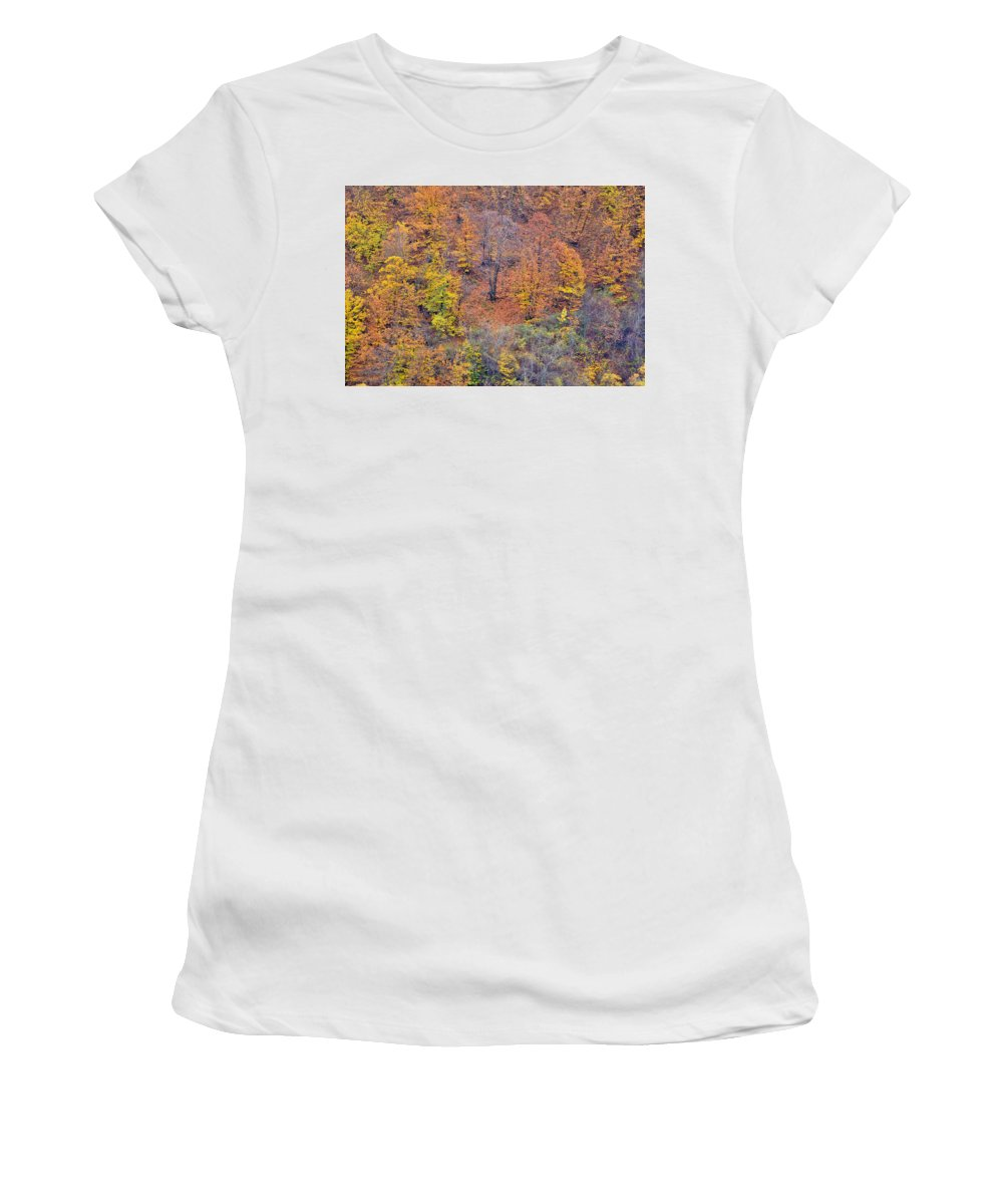 Trees Women's T-Shirt (Athletic Fit) featuring the photograph Fall Colors by Guido Montanes Castillo