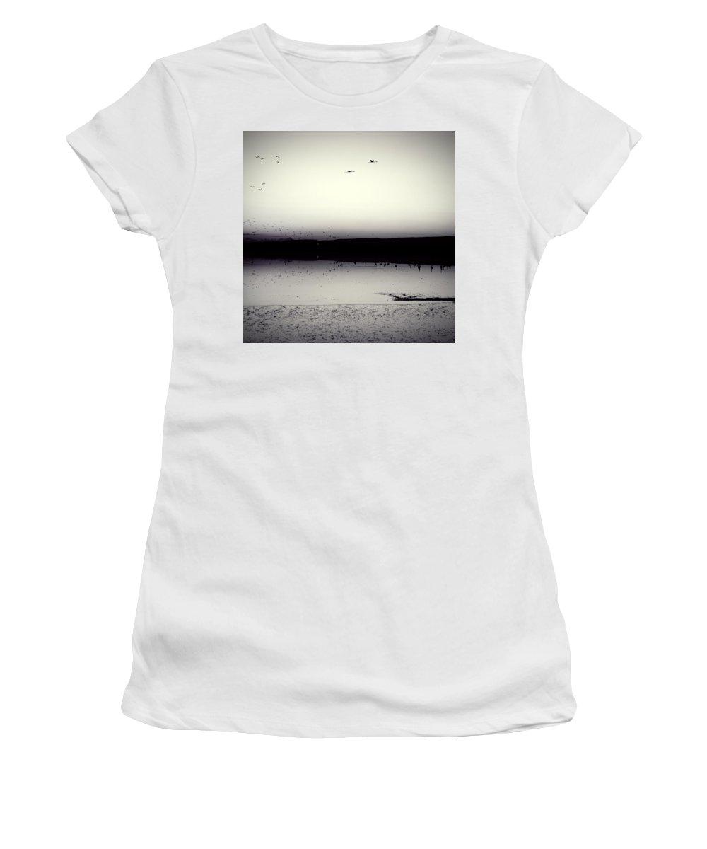 Air Women's T-Shirt featuring the photograph Flamingos by Stelios Kleanthous