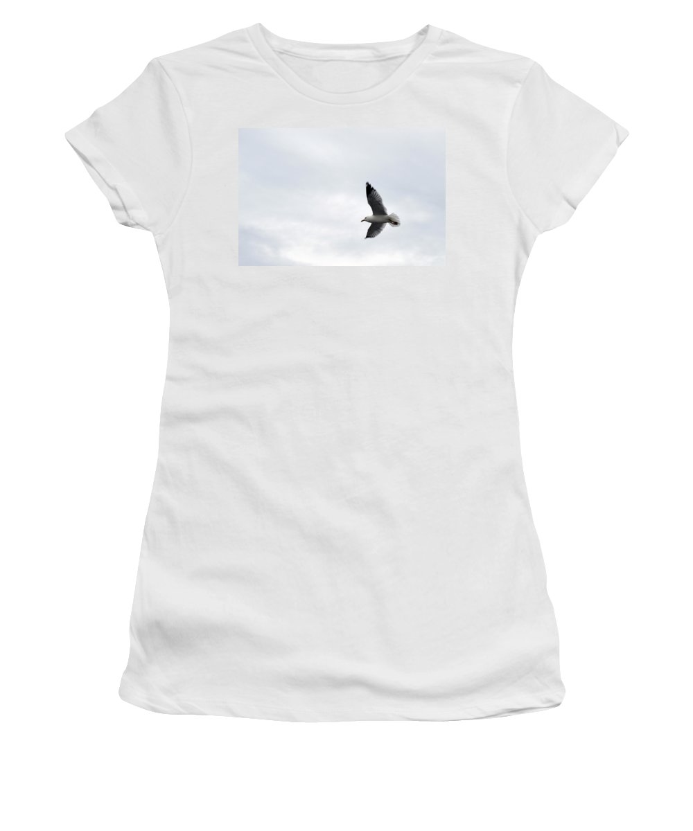 Seagull Women's T-Shirt featuring the photograph Flight Of The Seagull by Linda Kerkau