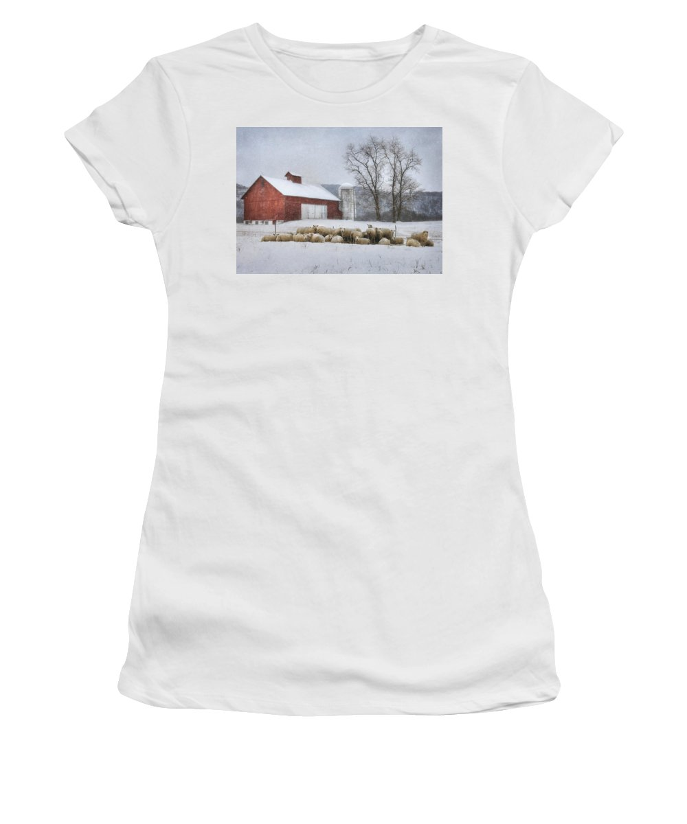 Sheep Women's T-Shirt (Athletic Fit) featuring the photograph Flock Of Sheep by Lori Deiter
