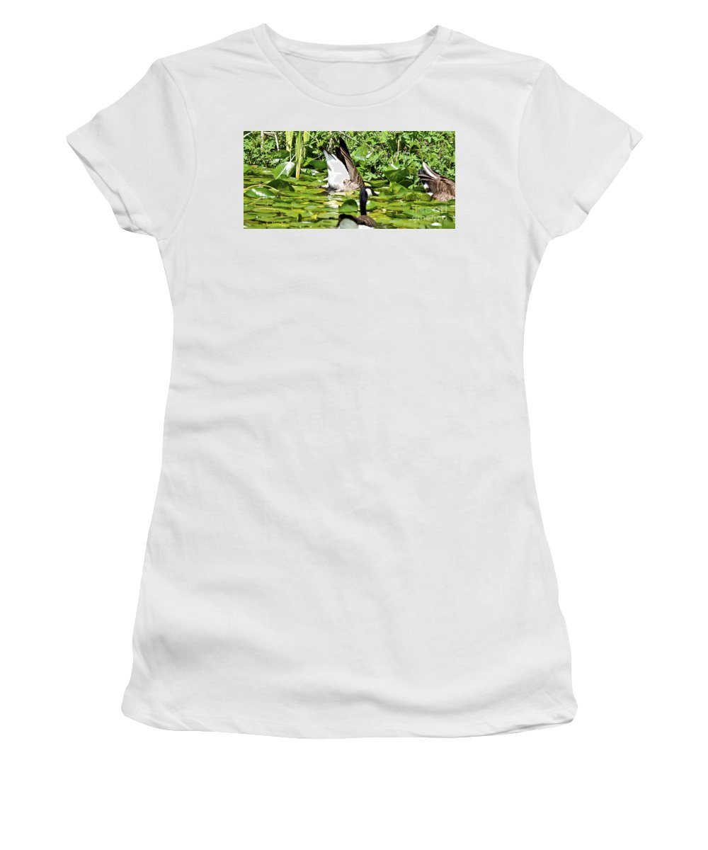 Feeding Women's T-Shirt (Athletic Fit) featuring the photograph Food Too Dive For by David Fabian