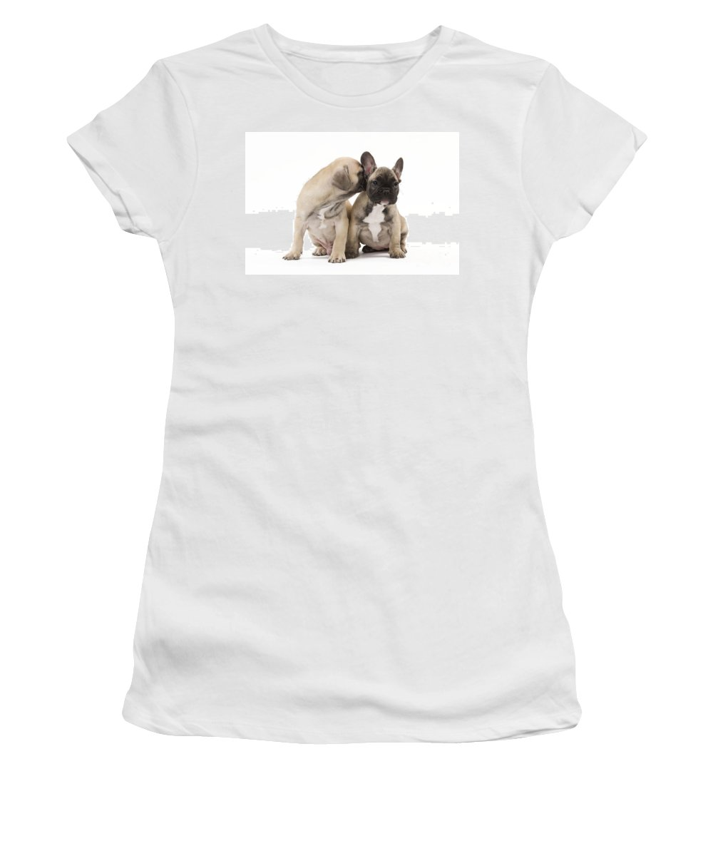 Dog Women's T-Shirt featuring the photograph French Bulldog Puppies by Jean-Michel Labat