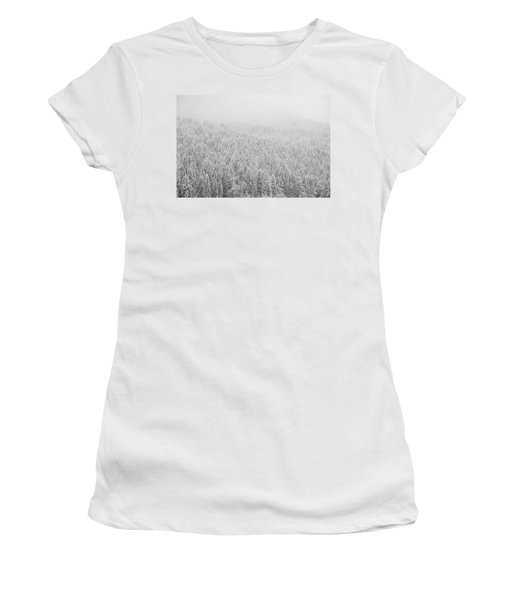 Landscape Women's T-Shirt (Athletic Fit) featuring the photograph Fur Trees In The Snow by Olivier De Rycke