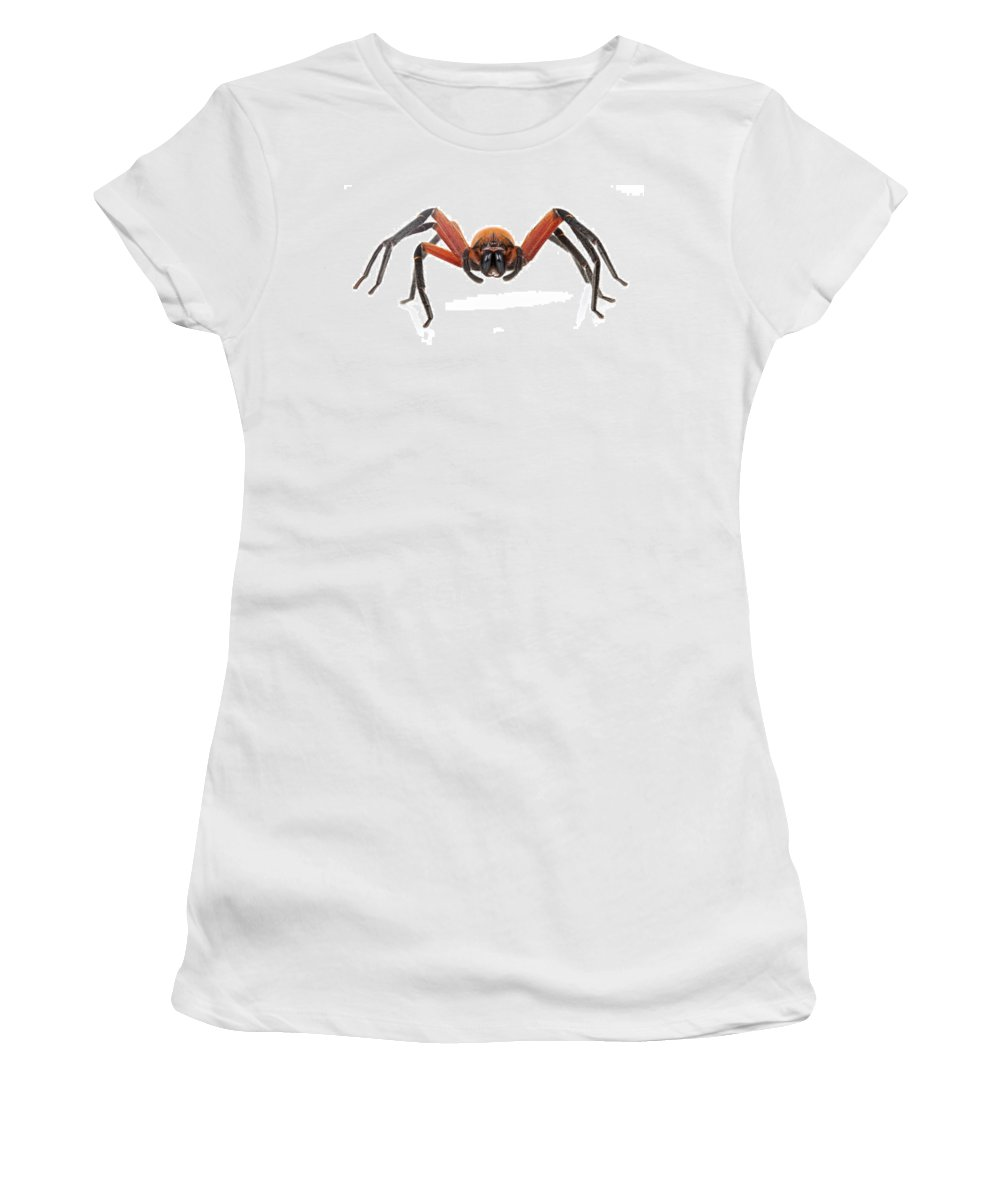 Feb0514 Women's T-Shirt (Athletic Fit) featuring the photograph Giant Crab Spider Suriname by Piotr Naskrecki