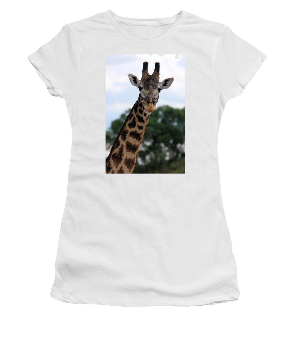 Giraffe Women's T-Shirt (Athletic Fit) featuring the photograph Giraffe by Aidan Moran