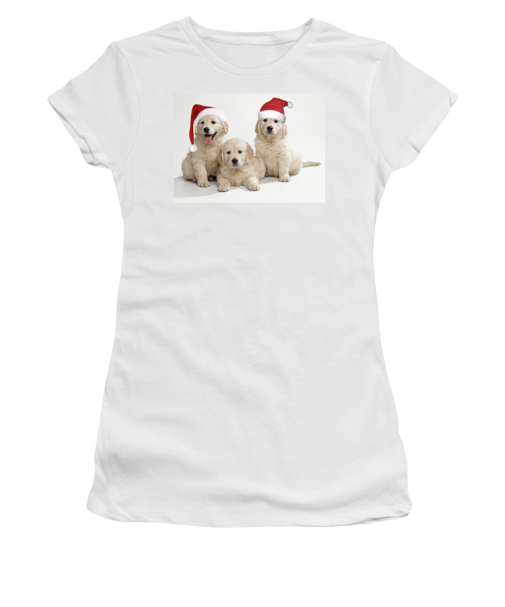 Golden Retriever Women's T-Shirt (Athletic Fit) featuring the photograph Golden Retriever Puppies With Christmas by John Daniels