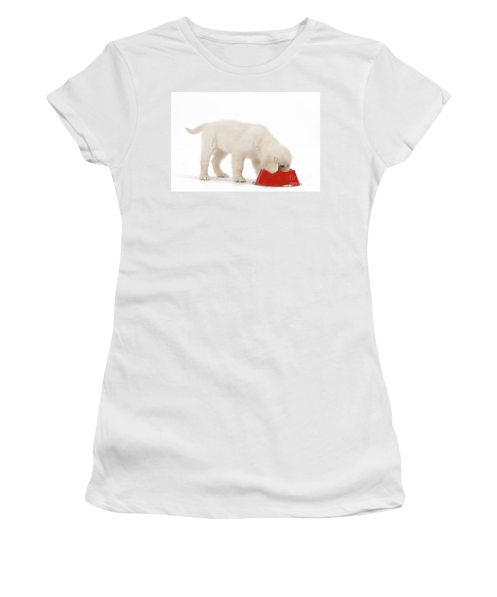 Golden Retriever Women's T-Shirt (Athletic Fit) featuring the photograph Golden Retriever Puppy Eating by Jean-Michel Labat