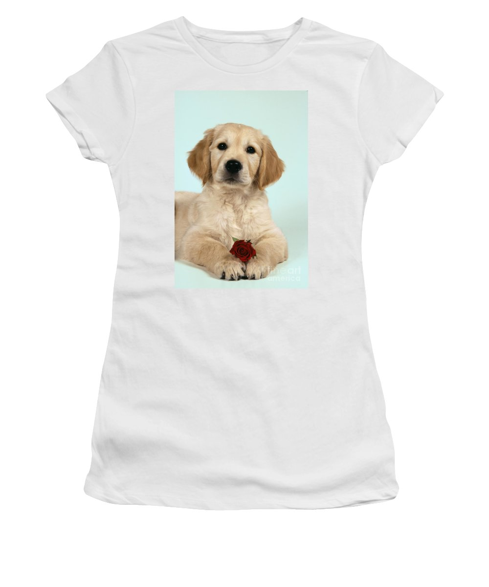 Golden Retriever Women's T-Shirt (Athletic Fit) featuring the photograph Golden Retriever Puppy With Rose by John Daniels