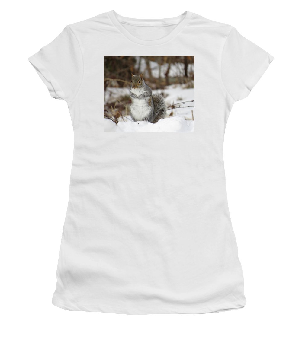 Gray Squirrel Women's T-Shirt (Athletic Fit) featuring the photograph Gray Squirrel In Snow by MTBobbins Photography