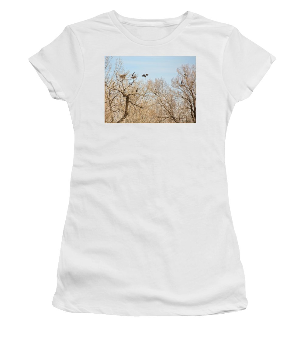 Great Blue Heron Women's T-Shirt featuring the photograph Great Blue Heron Nest Building 1 by James BO Insogna