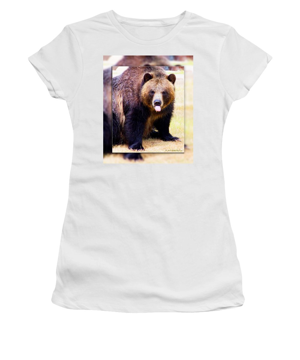 Grizzly Bear Women's T-Shirt featuring the photograph Grizzly Bear 2 by Walter Herrit