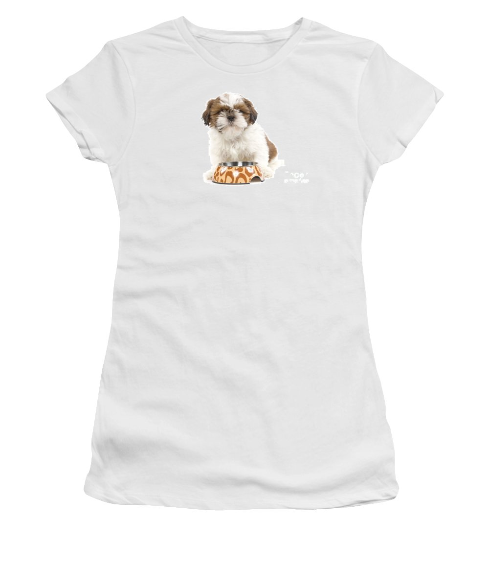 Havanese Women's T-Shirt (Athletic Fit) featuring the photograph Havanese With Dog Bowl by Jean-Michel Labat