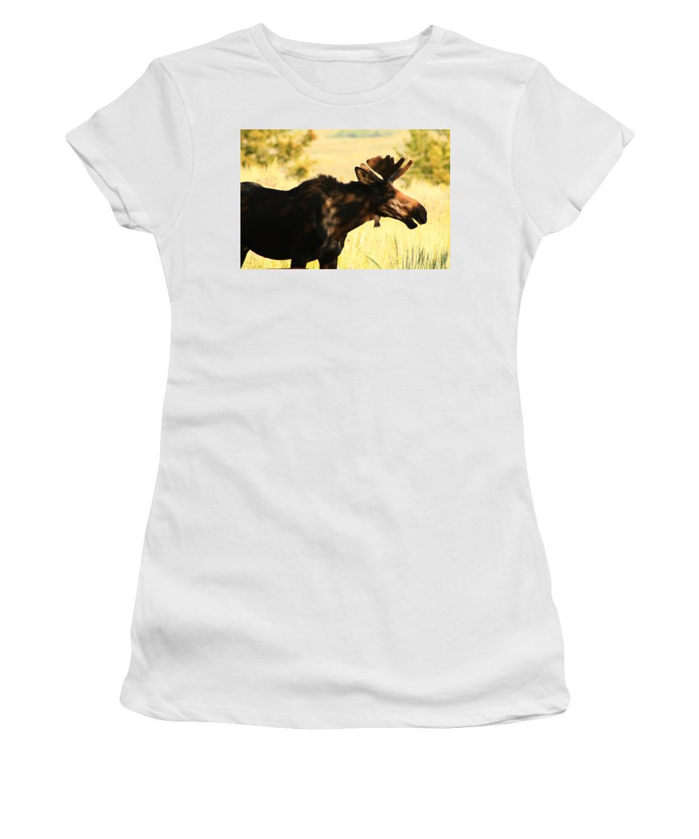Moose Women's T-Shirt featuring the photograph Hey I'm Eating by Catie Canetti