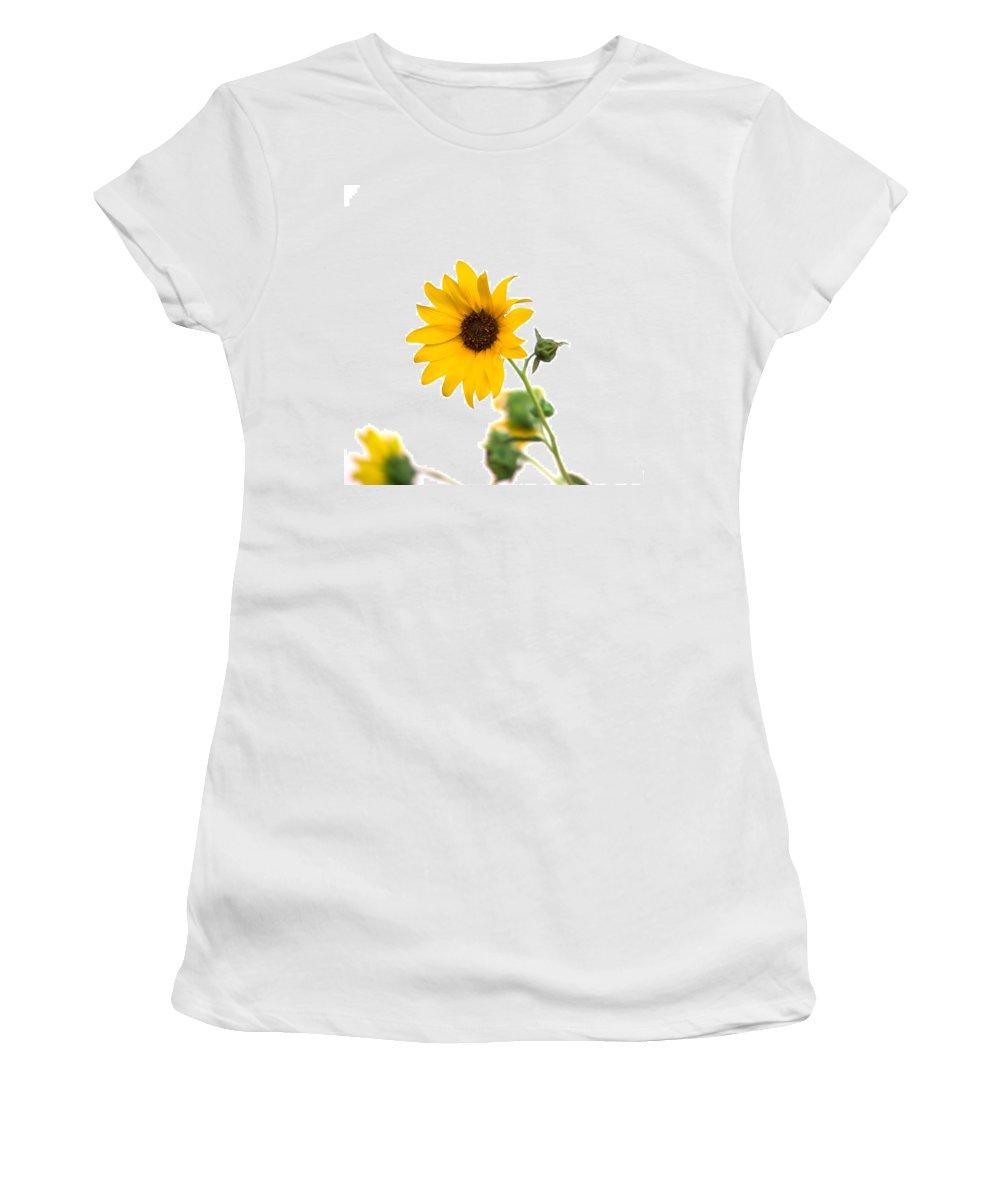 California Women's T-Shirt featuring the photograph Hi Key Sunflower by Peter Tellone