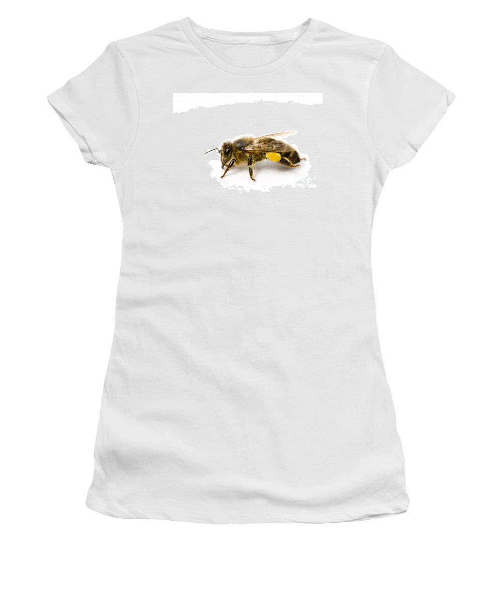 Bee Women's T-Shirt (Athletic Fit) featuring the photograph Honeybee by Mark Bowler