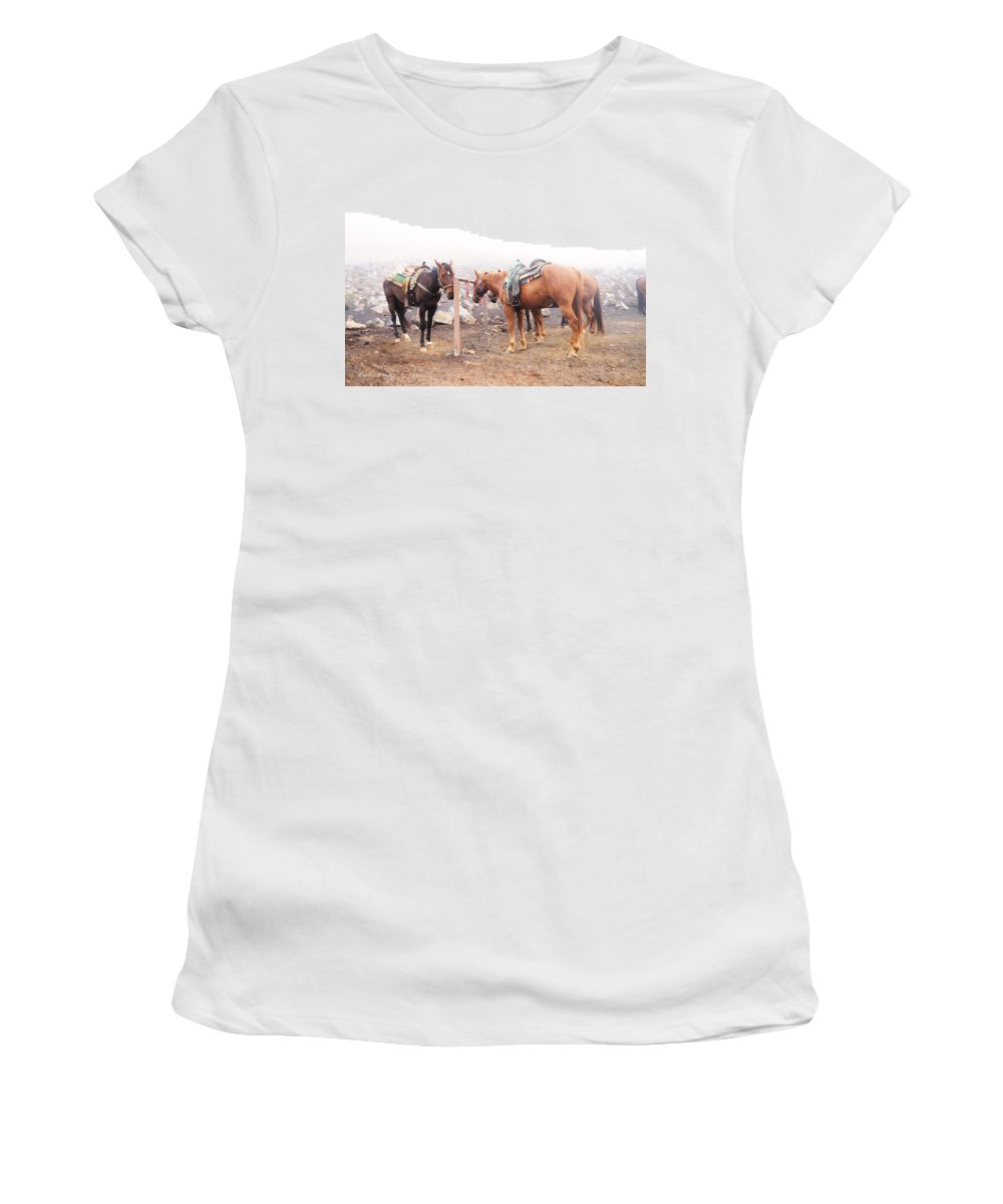 Popular Women's T-Shirt (Athletic Fit) featuring the photograph Horses In The Mist - Haleakala by Paulette B Wright