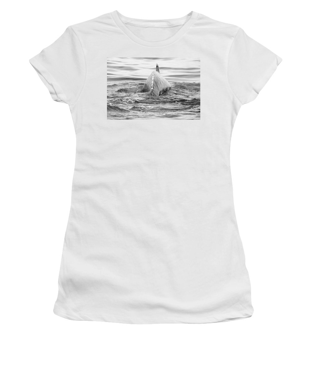 Animal Women's T-Shirt featuring the photograph Humpback by Pete Federico