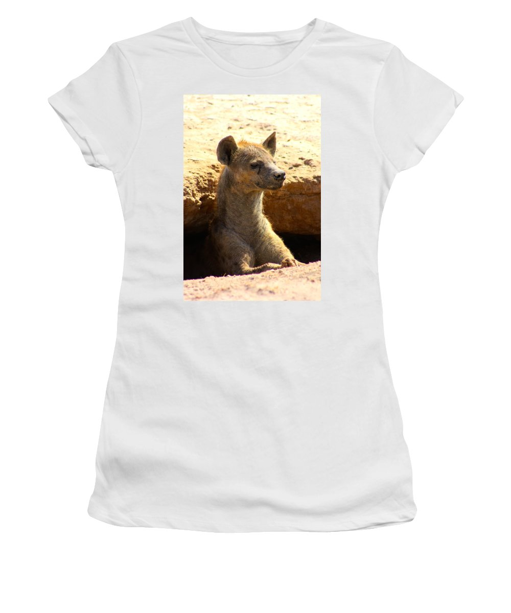 Hyena Women's T-Shirt featuring the photograph Hyena In Den by Amanda Stadther