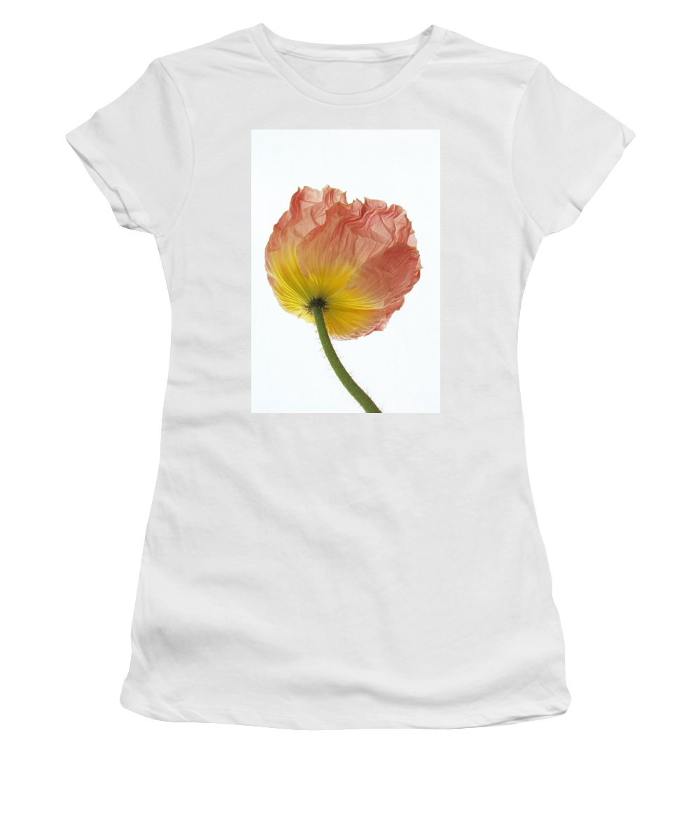 Iceland Poppy Women's T-Shirt (Athletic Fit) featuring the photograph Iceland Poppy 1 by Susan Rovira