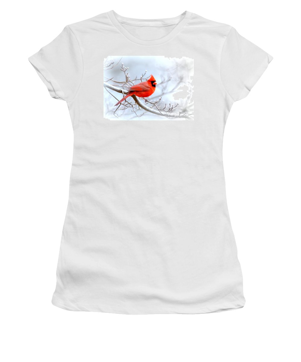 Cardinal Women's T-Shirt (Athletic Fit) featuring the photograph Img 2259-22 - Northern Cardinal by Travis Truelove
