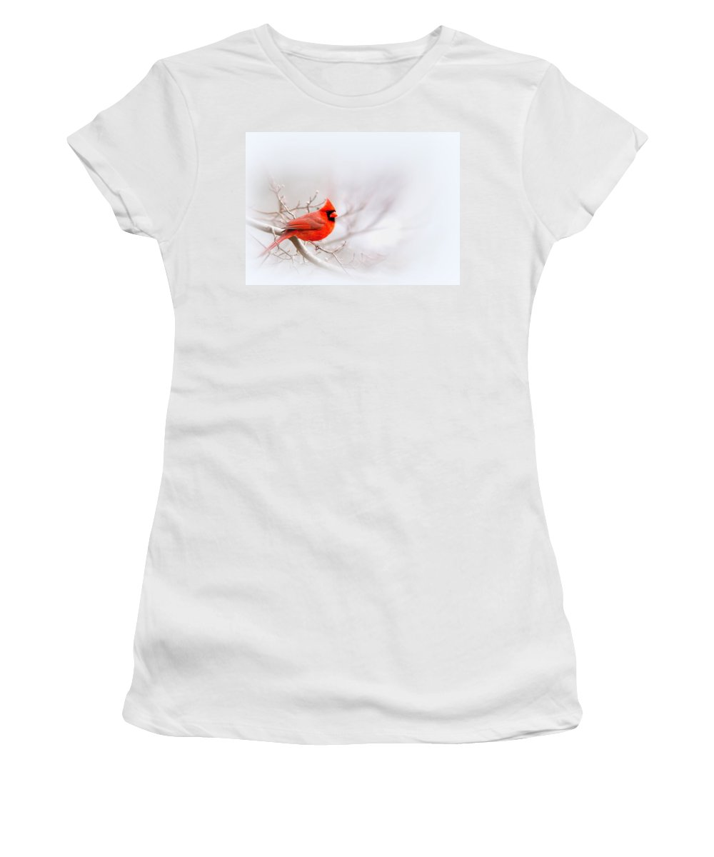 Cardinal Women's T-Shirt (Athletic Fit) featuring the photograph Img 2559-11 by Travis Truelove