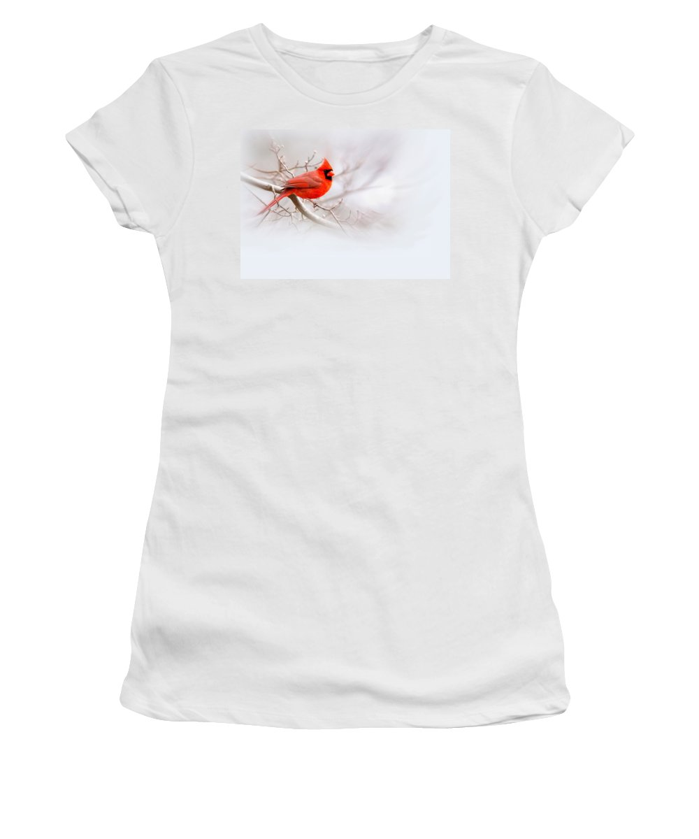 Cardinal Women's T-Shirt (Athletic Fit) featuring the photograph Img 2559-12 by Travis Truelove