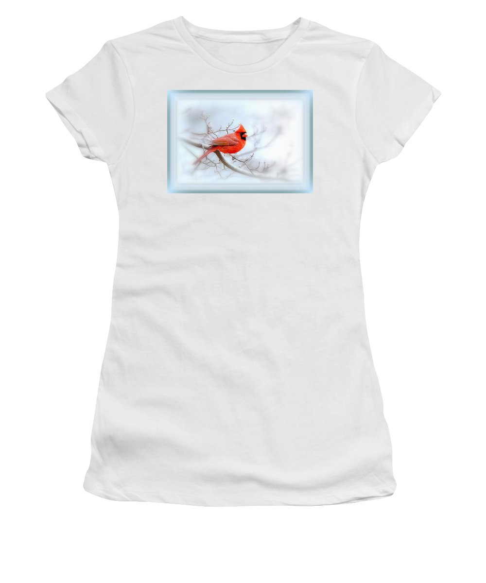 Cardinal Women's T-Shirt (Athletic Fit) featuring the photograph Img 2559-35 by Travis Truelove