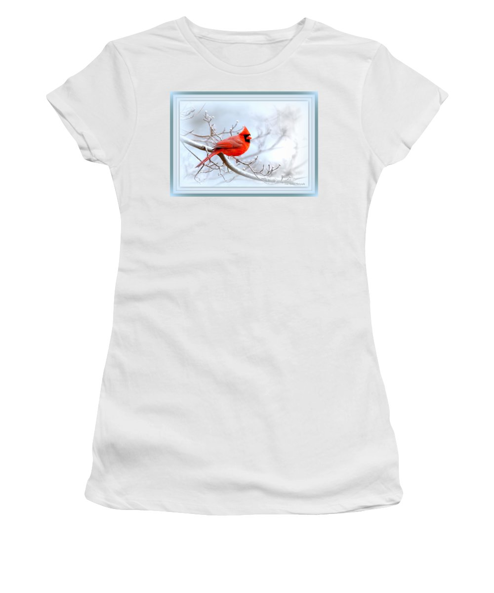 Cardinal Women's T-Shirt (Athletic Fit) featuring the photograph Img 2559-41 by Travis Truelove