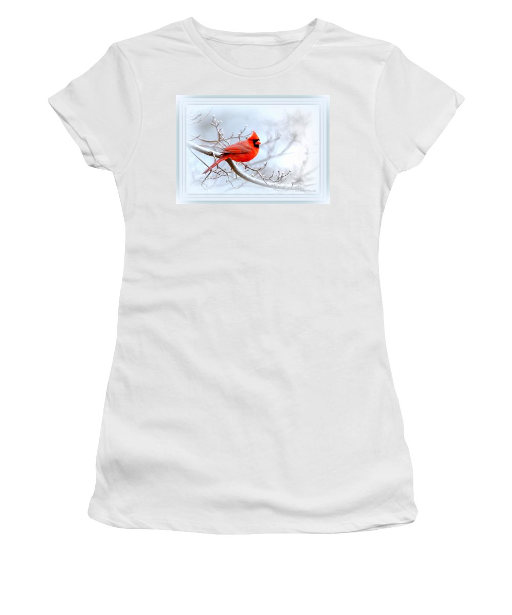 Cardinal Women's T-Shirt (Athletic Fit) featuring the photograph Img 2559-43 by Travis Truelove