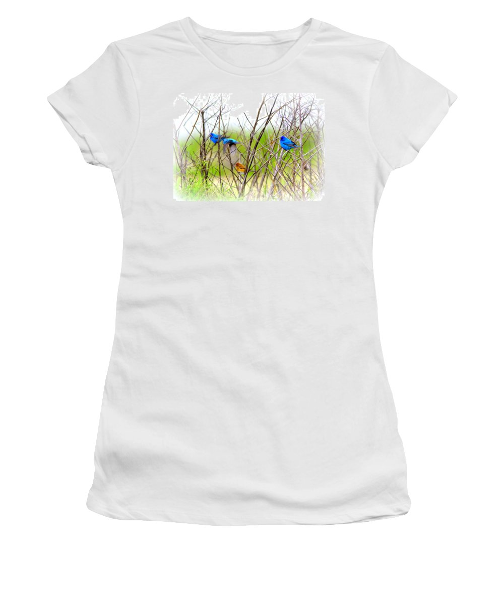 Indigo Bunting Women's T-Shirt featuring the photograph Indigo Bunting - 4 by Travis Truelove
