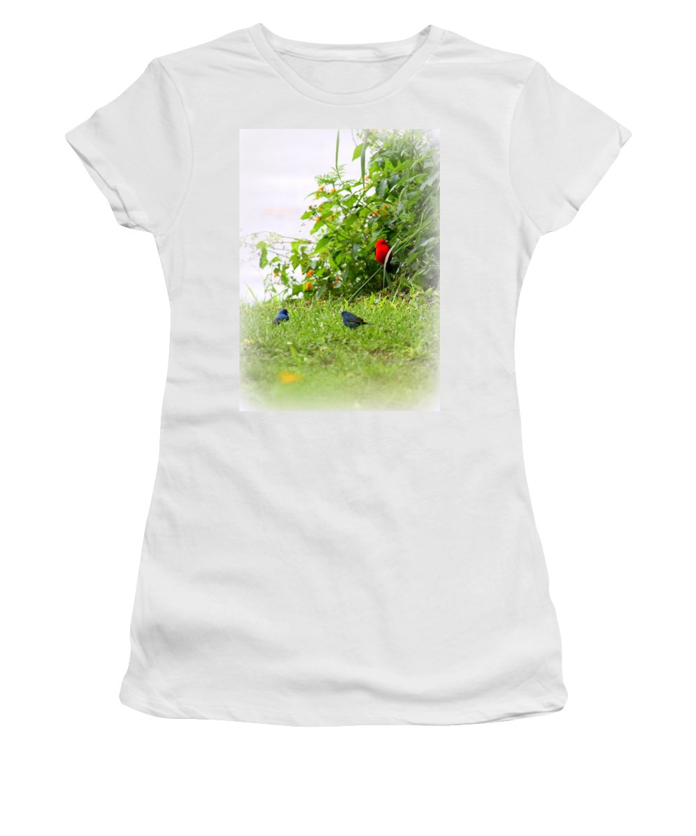 Indigo Bunting Women's T-Shirt featuring the photograph Indigo Bunting And Scarlet Tanager by Travis Truelove
