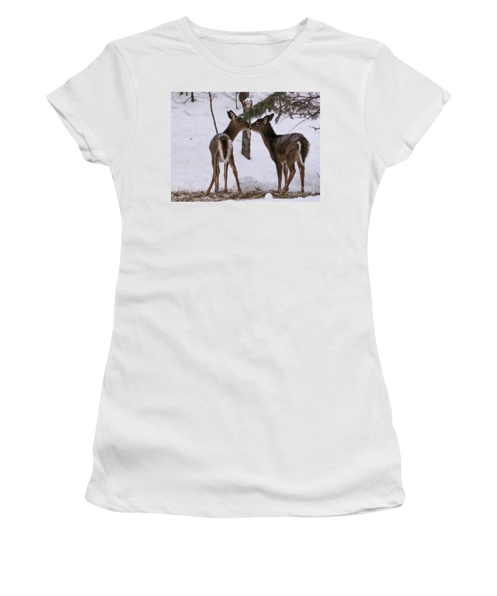 Women's T-Shirt (Athletic Fit) featuring the photograph Kissing Deer by Cheryl Baxter