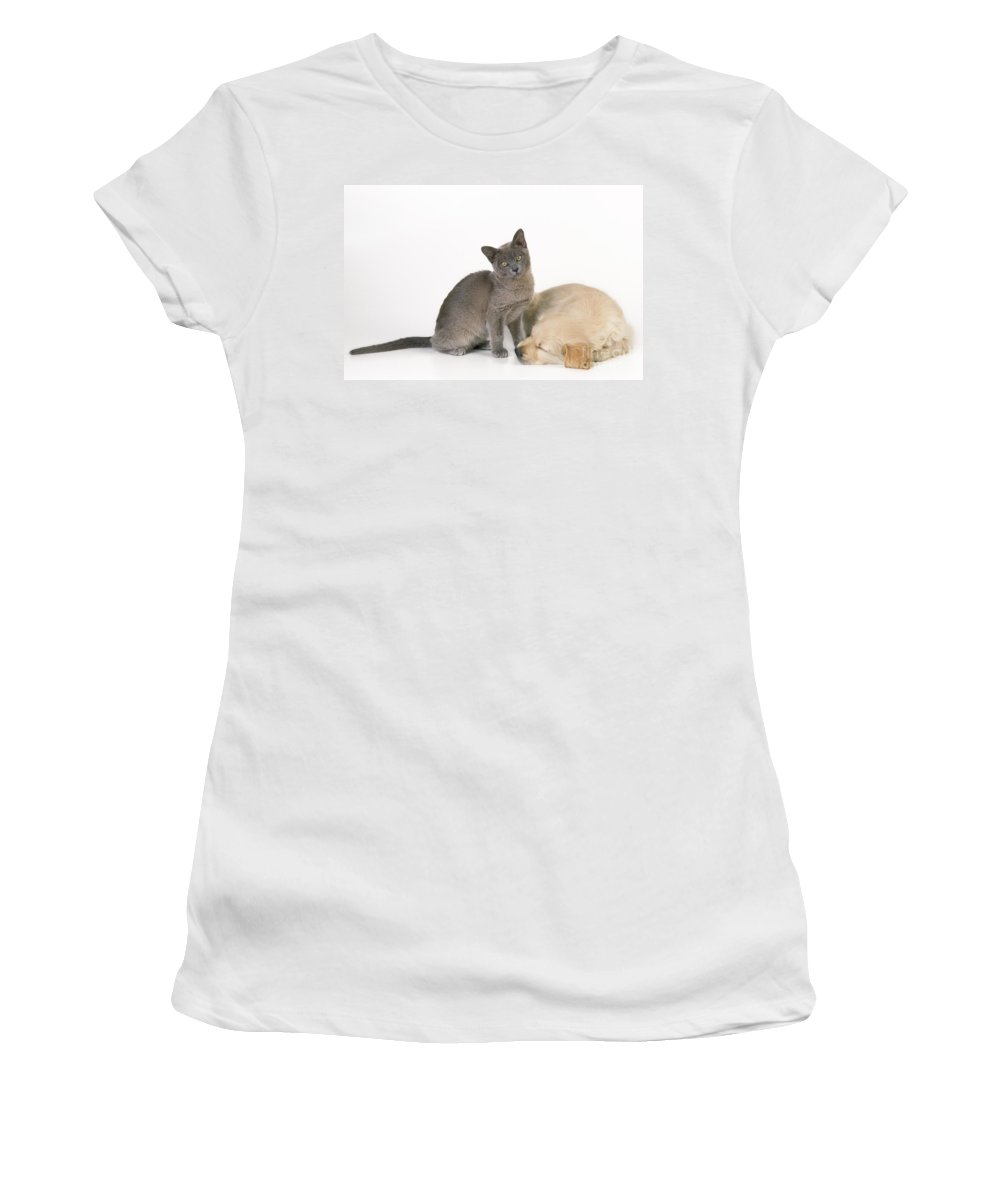 Cat Women's T-Shirt (Athletic Fit) featuring the photograph Kitten And Puppy Lying Together by John Daniels