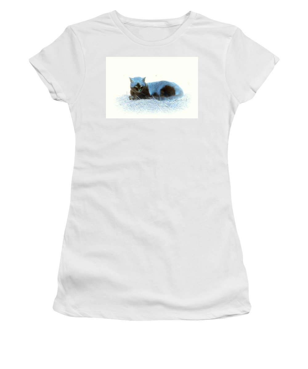 Cat Women's T-Shirt (Athletic Fit) featuring the photograph Kitty Blue IIII by Kathy Sampson