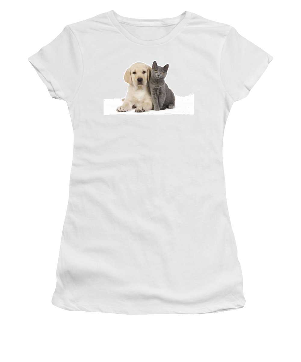 Labrador Retriever Women's T-Shirt (Athletic Fit) featuring the photograph Labrador Puppy With Chartreux Kitten by Jean-Michel Labat
