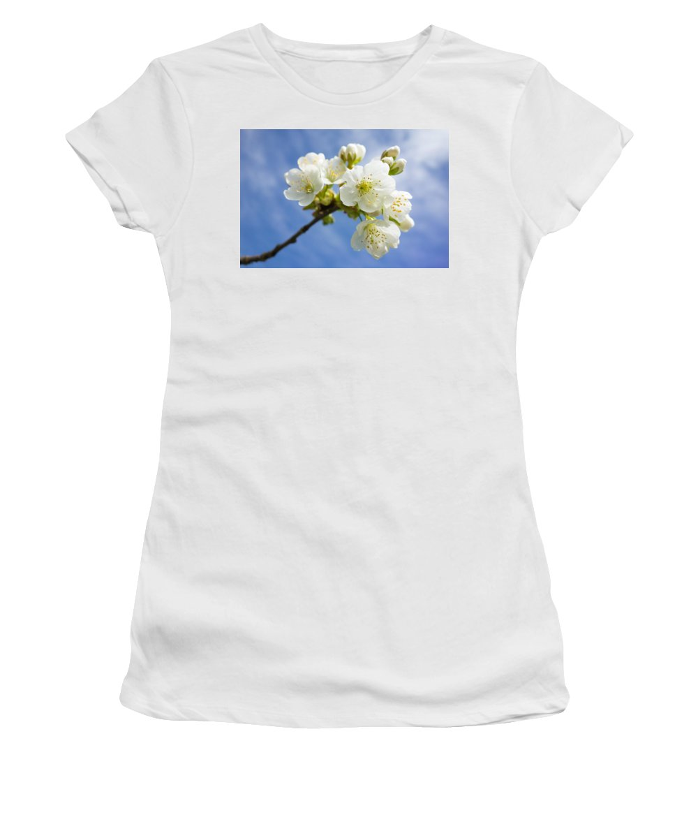 Apple Blossom Women's T-Shirt (Athletic Fit) featuring the photograph Lovely White Apple Blossoms On Branch by Matthias Hauser