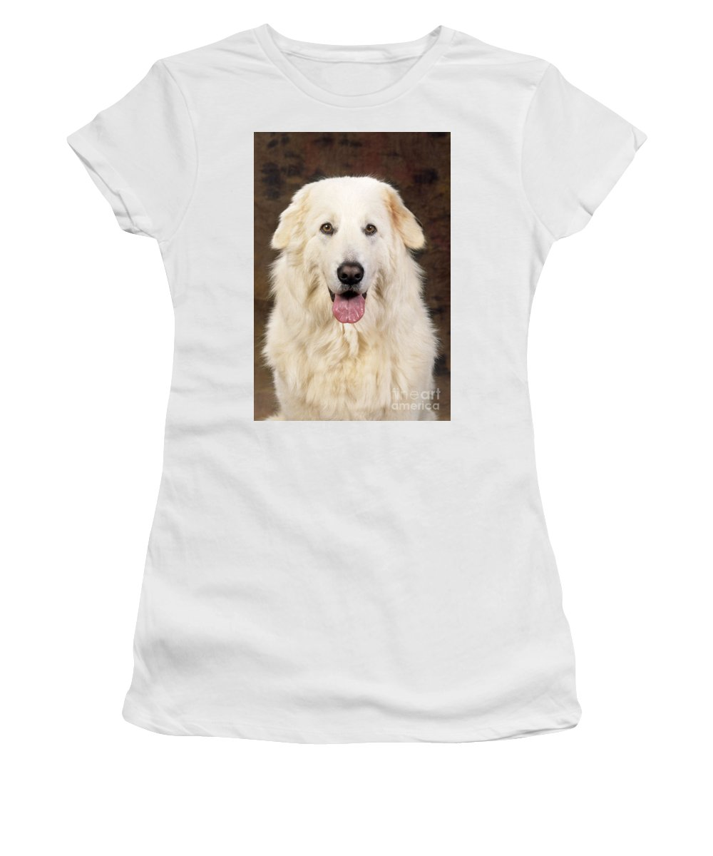 Maremma Women's T-Shirt (Athletic Fit) featuring the photograph Maremma Sheepdog by John Daniels