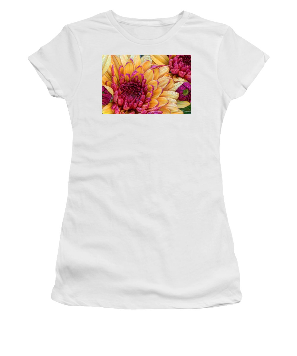 Dew Women's T-Shirt (Athletic Fit) featuring the photograph Misty Morning Dew by Heidi Smith