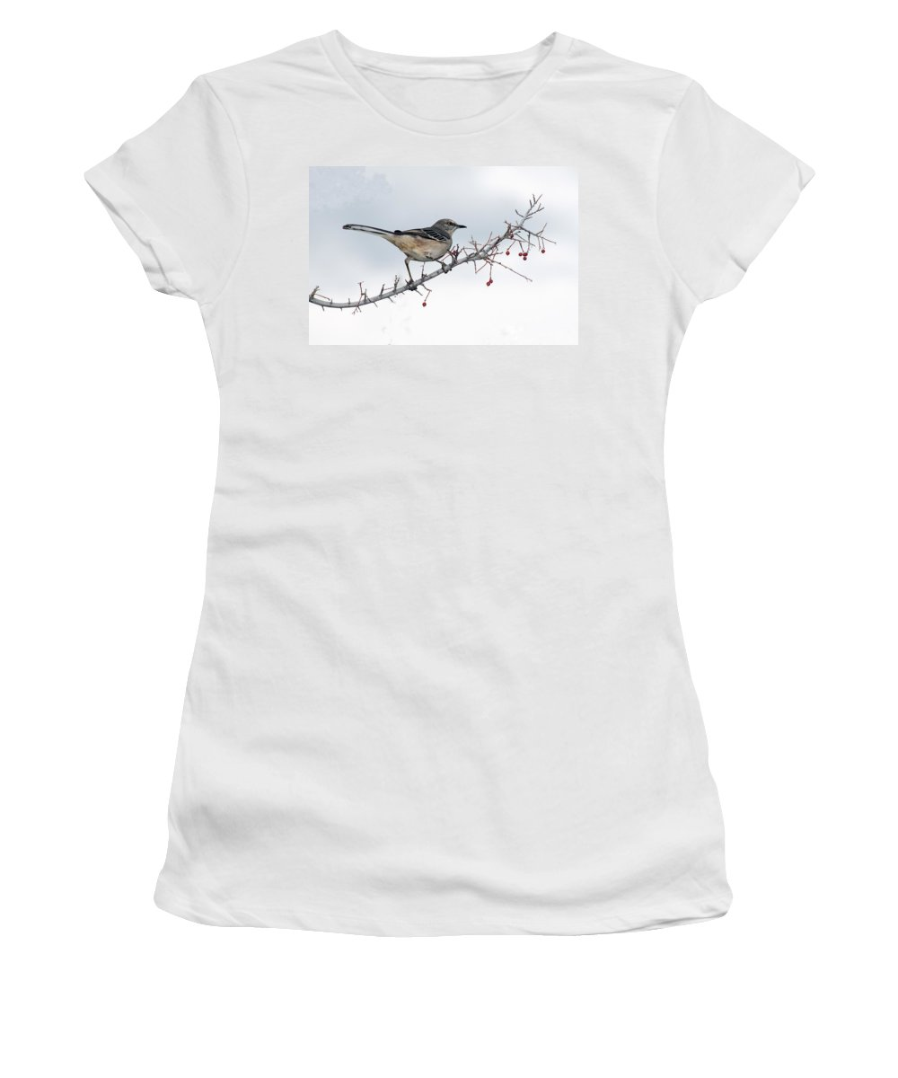 Mockingbird Women's T-Shirt featuring the photograph Mockingbird by Tam Ryan