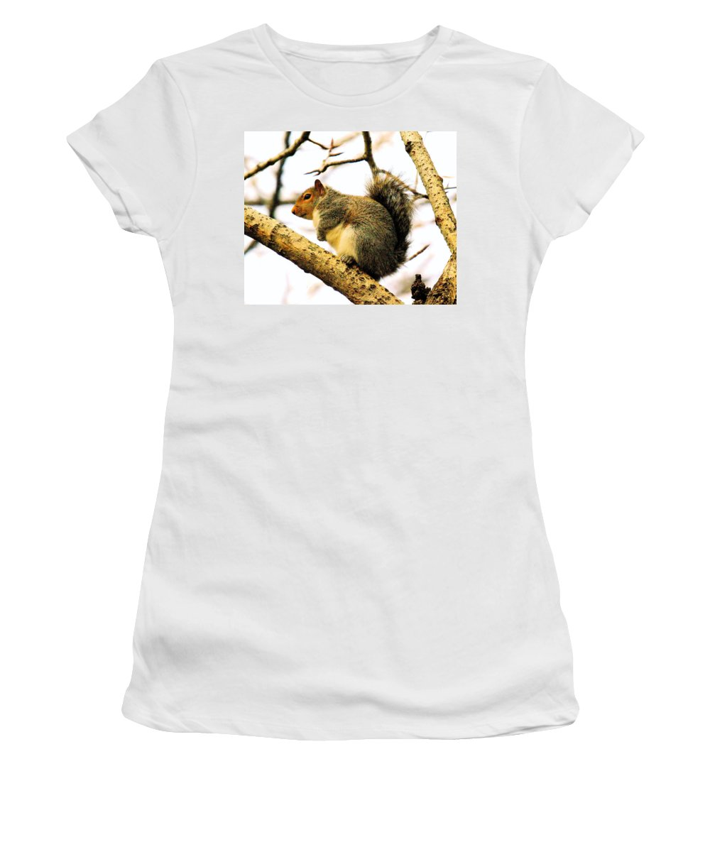 Squirrels Women's T-Shirt (Athletic Fit) featuring the photograph Mr Fat And Sassy by Jeff Swan